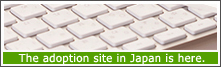The adoption site in Japan is here.